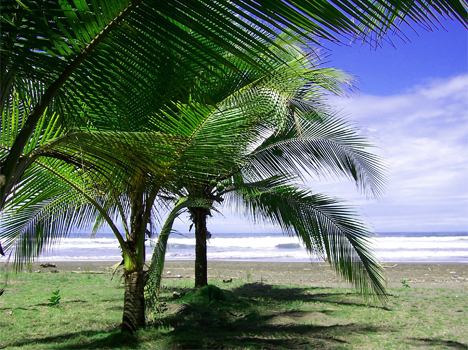 homes for sale costa rica