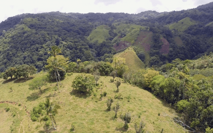 35 ACRES – Acreage With Plenty of Buildable Space, Rivers, Waterfalls, Ocean and Waterfall Views!!!!