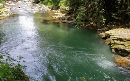 92.6 ACRES – Beautiful Mountain Views, Flat Usable Areas, Huge Swimming Holes, Waterfalls!!!