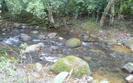 0.9 ACRE – Completely Usable Acre On River 200 Meters From The Paved Road!!