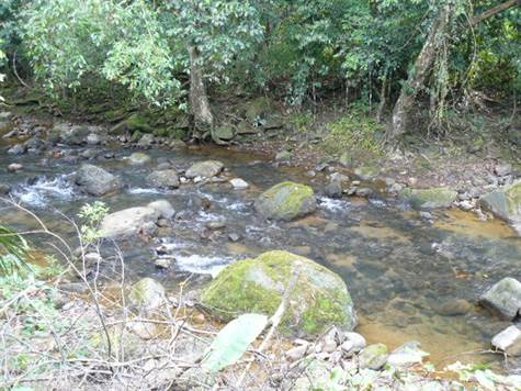 0.9 ACRE - Completely Usable Acre On River 200 Meters From The Paved Road!!