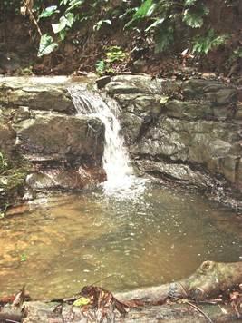 Yoga retreat waterfall
