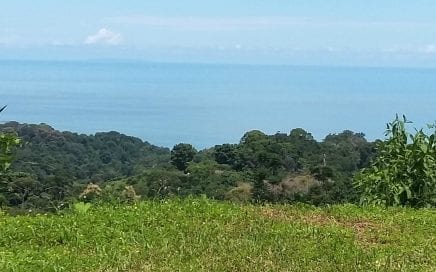 3 ACRES – Ocean View Lot In Nice Jungle Setting With Good Access And Great Price!!!