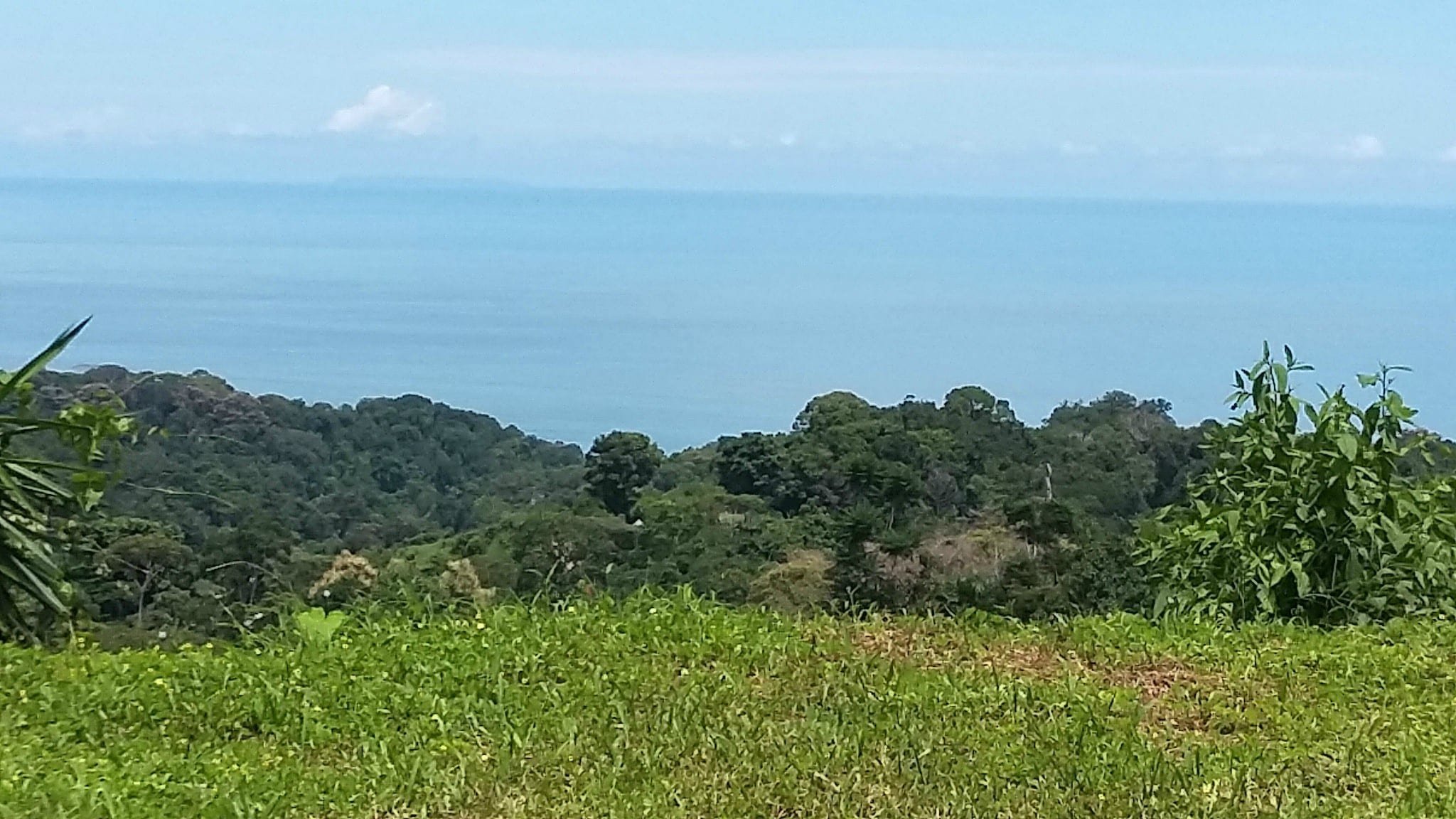 3 ACRES - Ocean View Lot In Nice Jungle Setting With Good Access And Great Price!!!