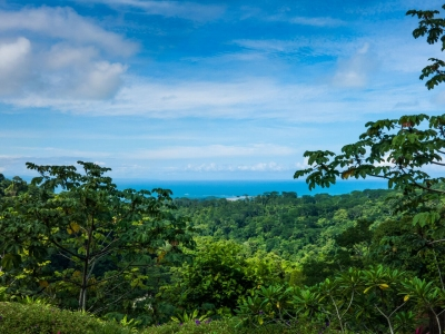 0.38 ACRES – 4 Bedroom Modern Tropical Home With Amazing Whales tale Ocean Views!!!