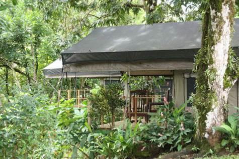 Tropical River Lodge