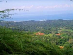 Home, Rivers, Ocean View, Jungle