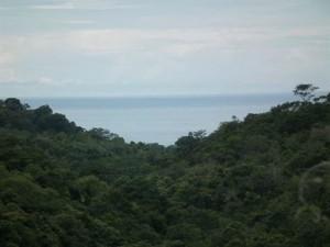 http://www.costaricarealestate.net/listings/listings/120/60/