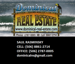 http://www.dominical-real-estate.com/