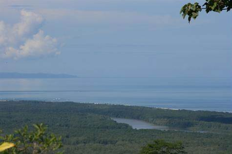 Primary Jungle And Open Pasture With Huge Ocean Views