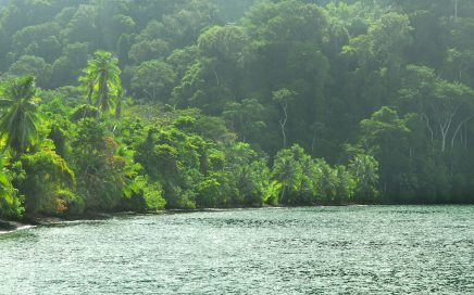 165 ACRES – Boat Access Off Grid Eco Lodge w/ 5 Cabins Plus 4 Rooms, 600 ft Of Beach Frontage
