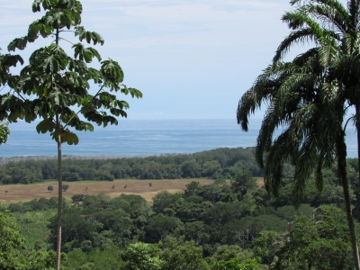 1.25 ACRES - Expansive Ocean View Property With Large Building Site In Gated Community!!