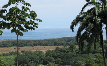 1.25 ACRES – Expansive Ocean View Property With Large Building Site In Gated Community!!