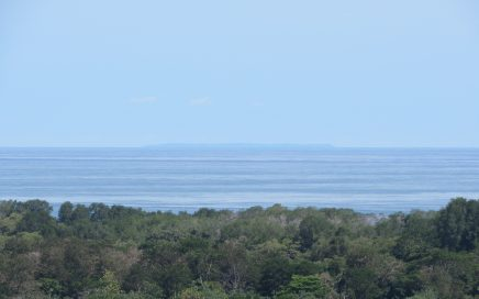 1.47 ACRES – Ocean View Property With Great Access In Gated Community At A Great Price!!!