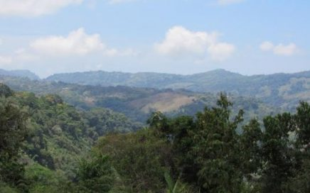 8 ACRES – 3 Mountain View Properties Each With Large Building Sites Being Sold As A Package!!!