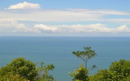 6.2 ACRES – Ocean View property With 4 Seperate Building Sites Perfect For Hotel Or Segregation!!!