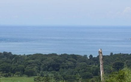 3/4 ACRE – Amazing Whales Tale Ocean View Lot At Very Affordable Price!!!