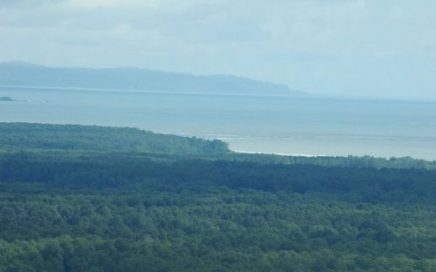 110 ACRES – Ocean and Mountain View Property With 20 Acre Hardwood Plantation!!