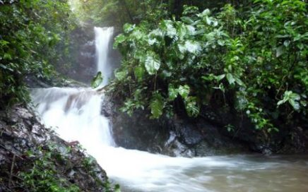 107 ACRES – Amazing Property At Foot Of Mnt Chirripo With Rivers And Waterfalls!!!!