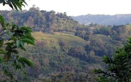 24 ACRES – Beautiful Property With Great Mountain Views, Multiple Building Sites, 2 Creeks