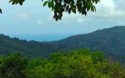 0.63 ACRES – Ocean views, 2×4 access,water & electric on site!!!