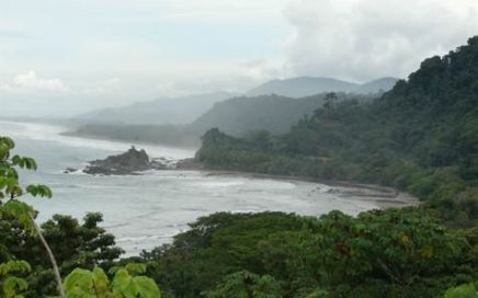 1.29 ACRES – Amazing White Water Ocean View Property In High End Gated Community!!!