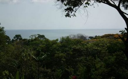 1.75 ACRES – Ocean View Property In Exclusive Gated Community With Great Access!!!