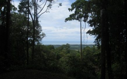3.1 ACRES – Beautiful Ocean View Property In Gated Community!!!