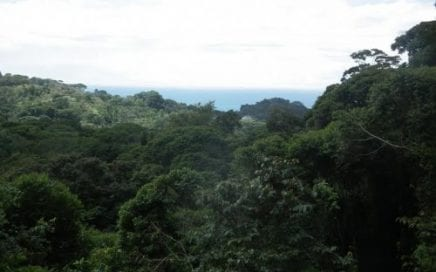 1.25 ACRES – Ocean View Property With Trail To Creek And Good Access At A Great Price!!