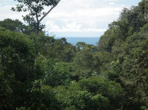 10 ACRES - Beautiful Ocean View Property With 2 Creeks Perfect For Retreat Center Or Hotel!!