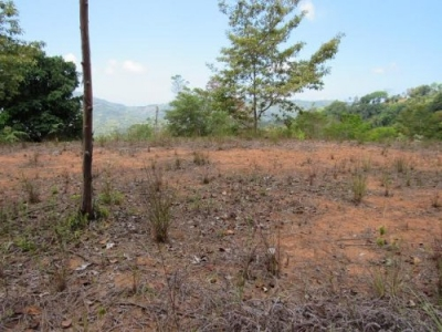 8 ACRES - 3 Mountain View Properties Each With Large Building Sites Being Sold As A Package!!!