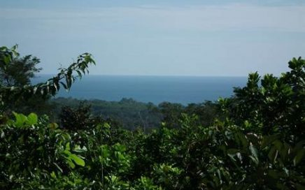 10 ACRES – Ocean View Property w/ River Frontage, Great Access, No Restrictions!!