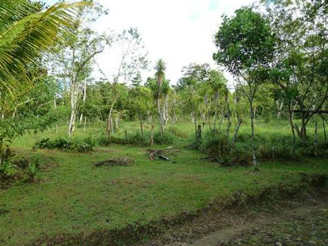 Costa Rica Farms For Sale San Isidro Real Estate