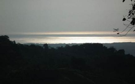 75 ACRES – Beautiful Ocean View Acreage w/ Creeks and Springs!