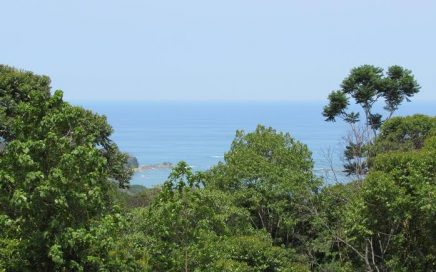 81.5 ACRES – Ocean View Development Property Perfect For Eco Hotel, High End Homes, Or Family Compound!!!