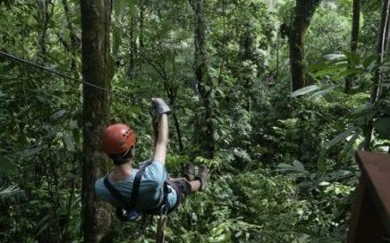 6.6 ACRES – Hacienda Baru Eco Lodge And Tour Business – 12 Cabins, Pool And  Restaurant!!