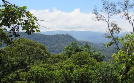 12 ACRES – Nature Lover's Dream Property!! All Year Creek And Great Mountain Views In Lagunas!!!!