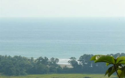 23.5 ACRES – Amazing Ocean View Property Touching Paved Road And Minutes To The Beach!!!!