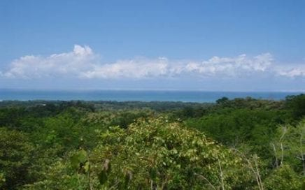 2.5 ACRES – Great Access, Great Ocean View, Great price!!