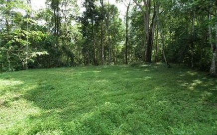 20 ACRES – Five Connected Lots In Beautiful Jungle Setting With Creek And Waterfall!!!