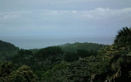 11.3 ACRES – Ocean View Property With Creek And Some Huge Trees And Plenty Of Room To Build!!!