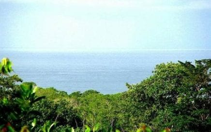 0.9 ACRE – Ocean View Lot 900ft From Highway, Just 1 Mile From The Beach!!