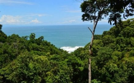 4.8 ACRES – Amazing Access Property With 2 Building Sites And Great Ocean Views!!!!