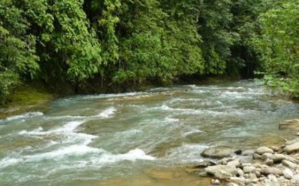 56 ACRES – Beautiful Farm in Great Area w/ Large River In The Middle, Waterfalls, Pasture, Mnt Views