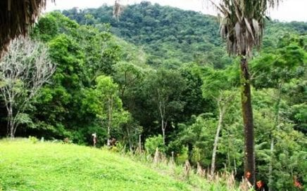 236 ACRES – Nice Valley View, Natural Garden And Rain Forest With Waterfalls!!!