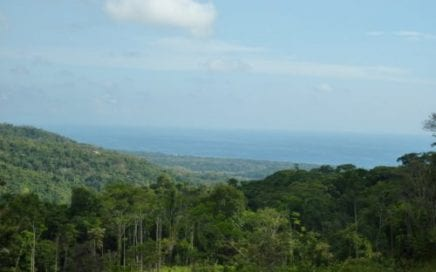 275 ACRES – Amazing Ocean View Property With Rivers And Waterfalls And Endless Potential!!!!