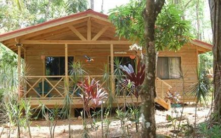 1.8 ACRES – B and J Cabins – 6 Cabins With A Total Of 9 Rooms In A Jungle Setting With Pool!!!!!