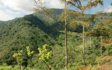 60 ACRES – Beautiful Farm With Amazing River And Great Mountain and Pacific Ocean Views!!!!