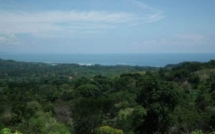 91ACRES – Amazing Development Property With Huge Ocean Views And Large River In The Heart Of Ojochal