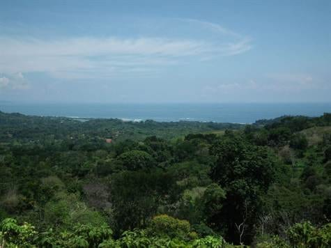 91ACRES - Amazing Development Property With Huge Ocean Views And Large River In The Heart Of Ojochal